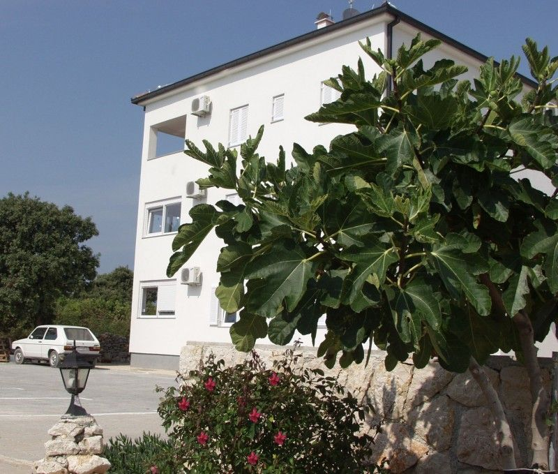 Apartments, Novalja, Island of Pag - Apartment ID 1312
