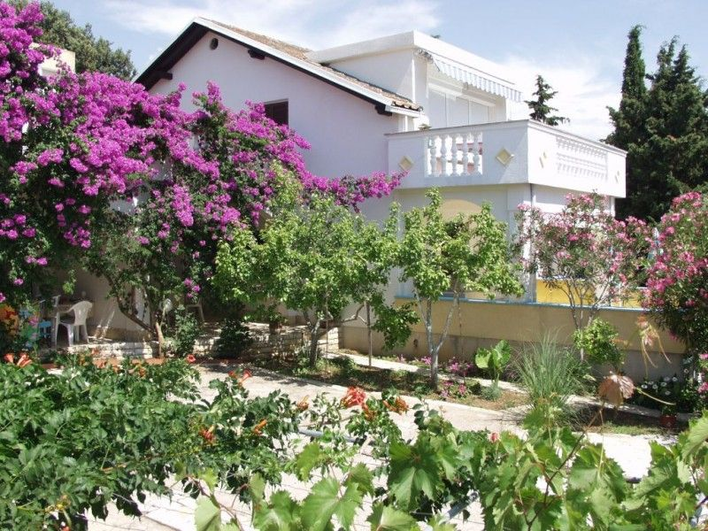 Apartments, Mandre, Island of Pag - Apartment ID 1333