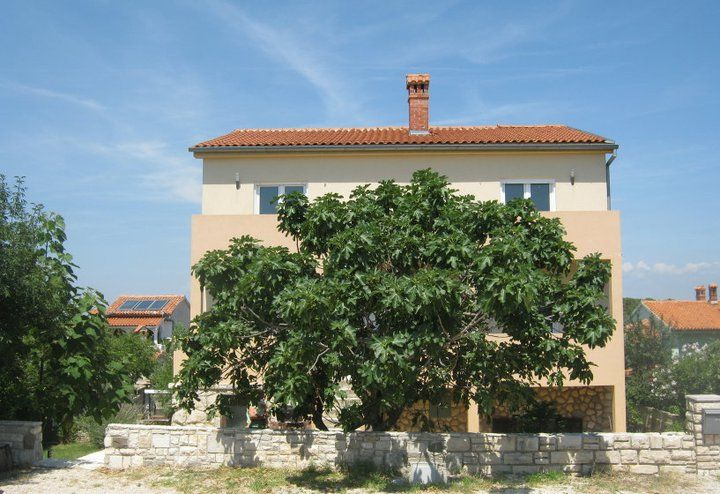 Apartments Pula & south Istria - Apartment ID 1743