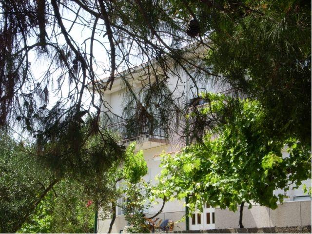 Apartmani Otok Lošinj - Apartman ID 0877