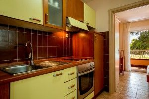 Apartment for 2-4 persons, park view