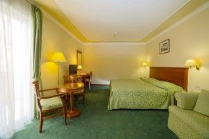 Double room Superior with parkview