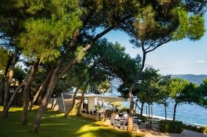 objects/514/123200_hotel-casa-valamar-sanfior-beach-bar-lungomare.jpg