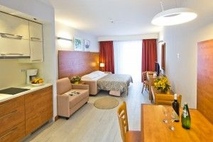 Studio apartment for 2-3 persons****
